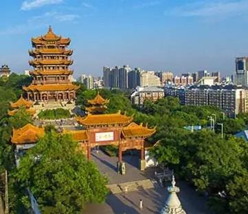 2019武汉种子交易会利好农业种植