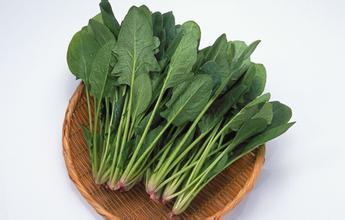 明仕亚洲_虾皮不能和菠菜一起吃