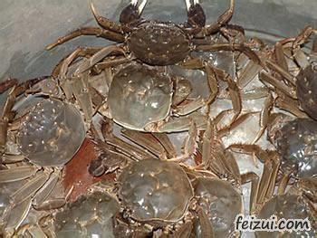 黄陂湖河蟹