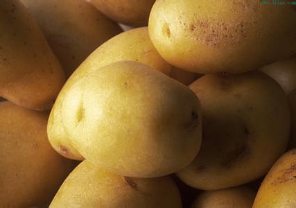 肃北马铃薯