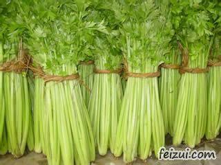 荆家实秆芹菜