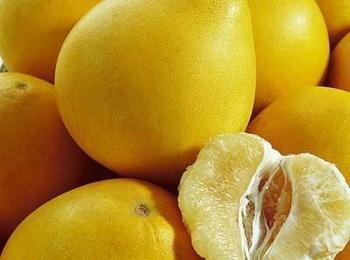 贡井龙都早香柚
