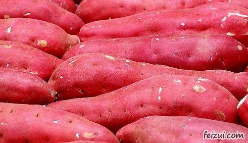 上蔡崇礼红薯