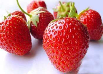 江苏省句容市――中国草莓之乡