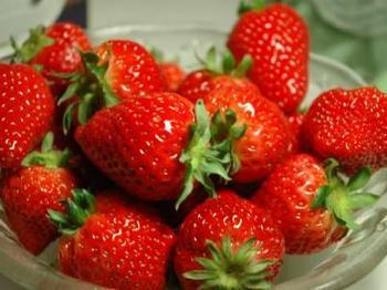 安丘市石埠子镇――中国草莓之乡