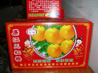 广东省廉江市――中国红橙之乡