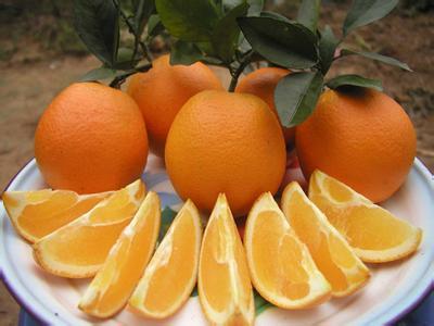 湖北省秭归县――中国脐橙之乡