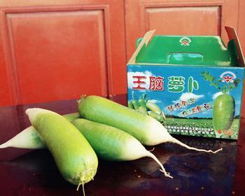 河南省固始县――中国萝卜之乡