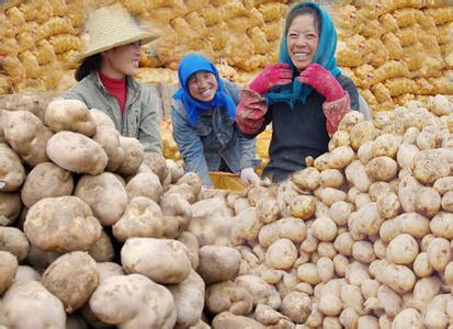 甘肃省定西市安定区――中国马铃薯之乡