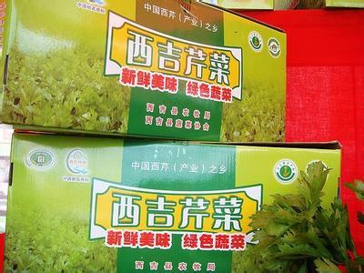 宁夏西吉县――中国西芹(产业)之乡