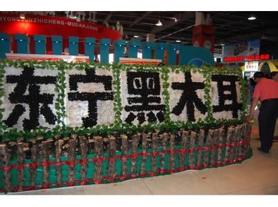 黑龙江省东宁县――中国黑木耳第一县