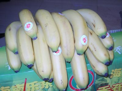 海南省乐东县――中国香蕉之乡