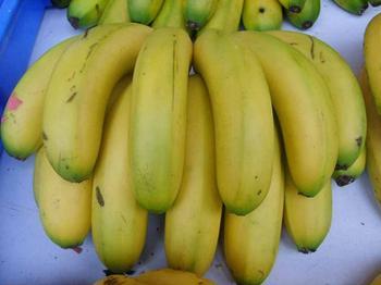 福建省平和县――中国香蕉之乡