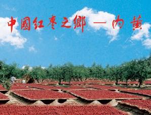 河南省内黄县――中国红枣之乡